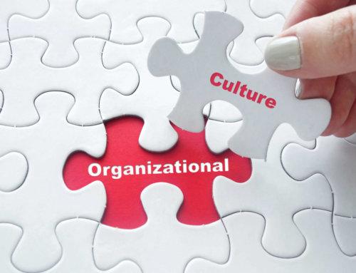 Integration Unternehmenssparte  als Interim HR Direktor