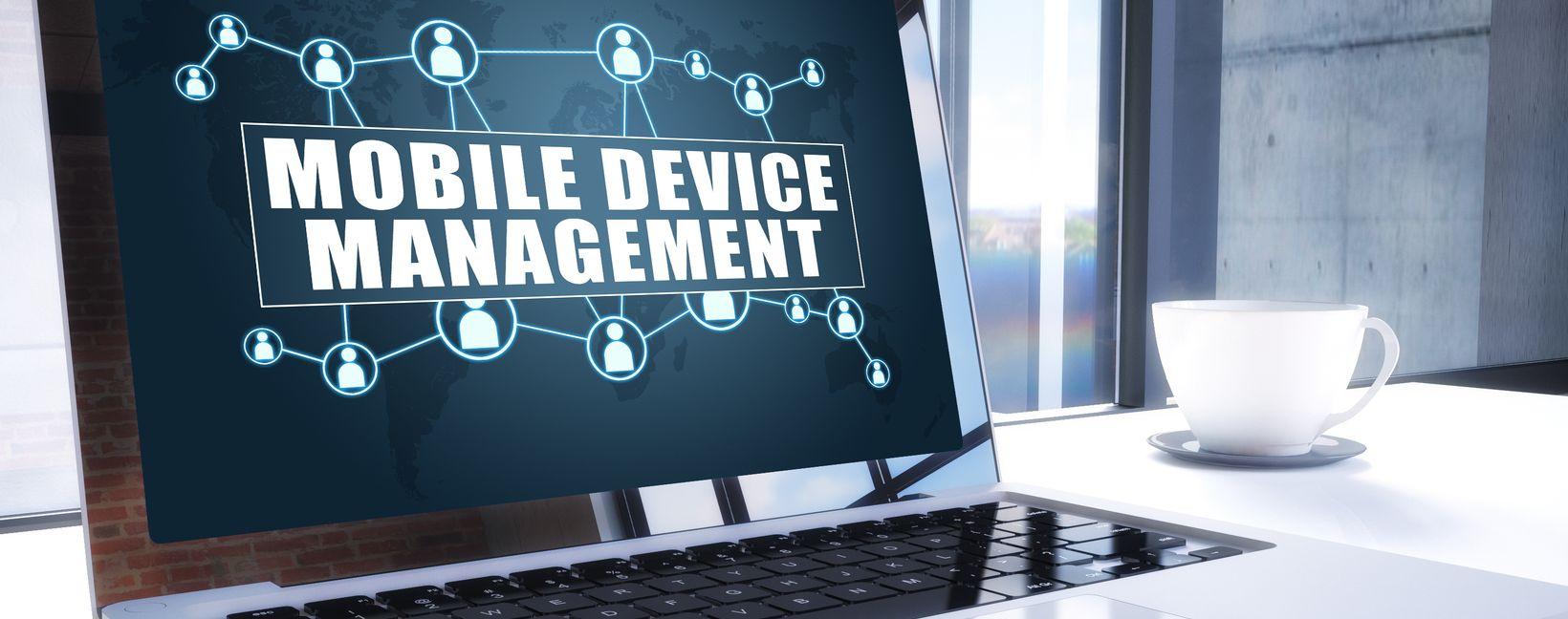 Einführung zentrales MDM als ERP Projektmanager